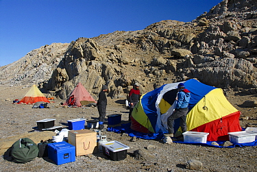 People putting up tent at a geology summer field camp, Rauer Islands, Antarctica February 2007