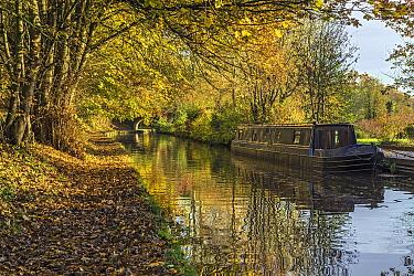 Llangollen Canal in autumn, Shropshire, England, UK November 2019.