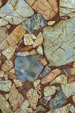 Leesburg limestone conglomerate rock. Fragments of Paleozoic limestone, dolomitic limestone, quartzite, quartz, schist, slate, and greenstone in matrix cemented by calcite formed in a Triassic half-gr...
