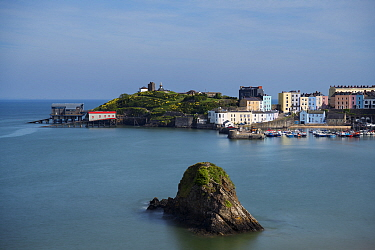 Fishing town of Tenby with RNLI lifeboat stations, old and new, on headland. Gosker Rock in foreground, composed of dipping beds of carboniferous sandstones. Pembrokeshire Coast National Park, Wales,...