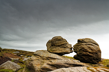 Wain Stones known as The Kiss, millstone grit boulders from the Carboniferous, eroded and sculpted. Bleaklow, near Glossop, Peak District National Park, England, UK. June 2020.