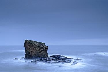 Charley's Garden Rock, sea stack of triassic sandstone. Seaton Sluice, near Whitley Bay, Tyneside, England, UK. December 2019.