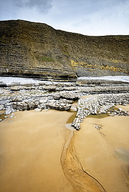 Fault on cliff and foreshore, displacing layers of Blue Lias rock from the Jurassic age. Southerndown, South Glamorgan Heritage Coast, Wales, UK. September 2018.