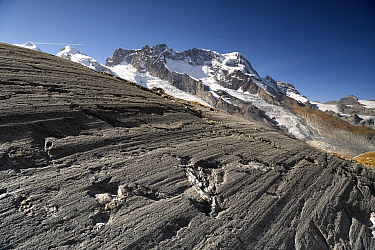 Glacial striations on rock near snout of Findel Glacier, created by abrasion at base of glacier when rocks are dragged over the bedrock. Zermatt, Valais, Switzerland. September 2019.