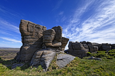 The Boxing Glove, an exposure of eroded and sculpted millstone grit sandstone from the carboniferous period. North Face of Kinder Scout, near Glossop, Peak District National Park, England, UK. June 20...