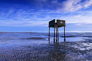Tide shelter on the Pilgrims Trail, a line of posts marks the safe trail to Lindisfarne over the soft sands. Northumberland, England, UK. December 2018.