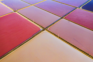 Aerial view of salt pans, pink from pigment of Bacteria (Halobacterium) which thrive in highly saline environments. Salt extracted here is shipped throughout Europe. Santa Pola, Valencian Community, S...