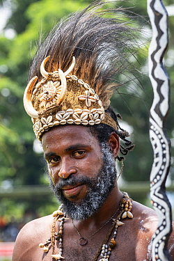 Papuan man in traditional headdress, portrait. At Sing-sing gathering where traditional cultures including dance and music are shared. Morobe Show, Lae, Papua New Guinea. 2019.