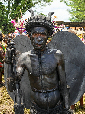 Papuan man covered in black body paint in traditional costume with horns and wings, portrait. At Sing-sing gathering to share traditional dance and music. Morobe Show, Lae, Morobe Province, Papua New...