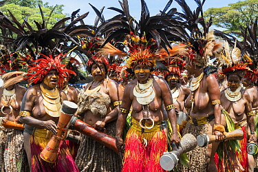 Papuan women participating in Sing-sing gathering to share traditional cultures including dance and music. Morobe Show, Lae, Morobe Province, Papua New Guinea. 2019.