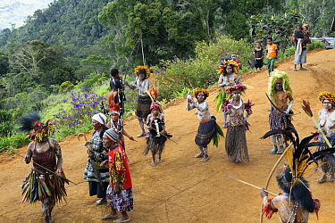 Kiowe villagers participating in traditional welcome ceremony. Eastern Highlands, Papua New Guinea. 2019.