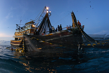 Commercial purse seiner hauling in the nets at first light, Andaman Sea, Thailand, Krabi Province, Thailand, December 2015.