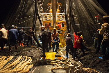 Fishing crews aboard a Thai commercial purse seiner hauling in nets at night, Krabi Province, Thailand, December 2015