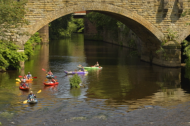 Group of kayakers on River Mersey, Stockport, Greater Manchester, England, UK. June 2019.
