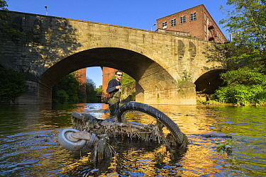 Angler fishing for Brown trout (Salmo trutta) on River Mersey, remains of dumped bike and shopping trolley in foreground. Greater Manchester, England, UK. May 2019.