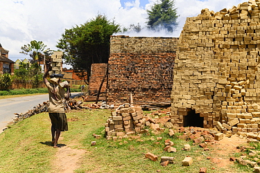 Woman carrying bricks on head in brick making process. Central Madagascar. 2019.