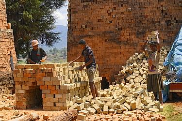 Brick making, woman carrying bricks on head. Central Madagascar. 2019.