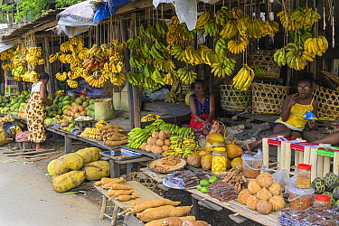 Fruit and vegetable market stall, women selling produce such as bananas, yams and jackfruit. Central Madagascar. 2019.