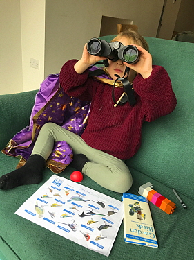 Young girl looking through binoculars, taking part in the RSPB Big Garden Birdwatch 2021; indoors looking out through window to feeders, with bird book, Bristol, UK. Model released. Medium repro only.