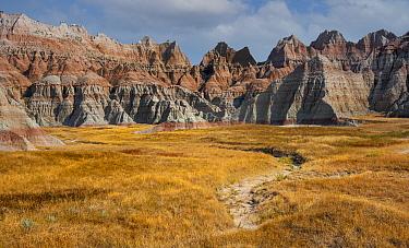 Eroded badlands and prairie grasses, Badlands National Park, South Dakota, USA. August.