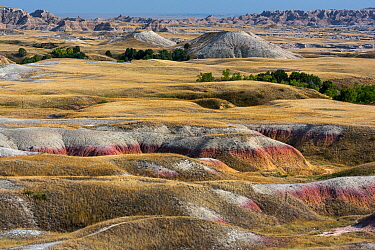 Prairie and eroded formaions at Sage Creek Basin, Badlands National Park, South Dakota, USA. August.