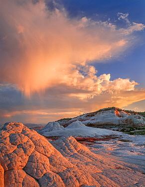 Erosion sculpted striated sandstone, Vermilion Cliffs National Monument, Arizona, USA.