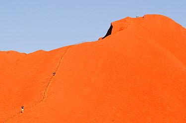 Tourists descending Uluru / Ayers Rock on designated route. Uluru-Kata Tjuta National Park, Northern Territory, Australia. 2008.