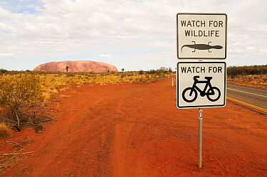 Road signs warning drivers to watch out for wildlife and cyclists, Uluru / Ayers Rock in distance. Uluru-Kata Tjuta National Park, Northern Territory, Australia. 2008.
