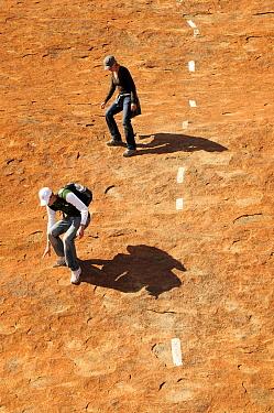 Tourists descending Uluru / Ayers Rock, following marked route. Uluru-Kata Tjuta National Park, Northern Territory, Australia. 2008.