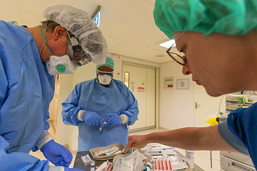 Anesthesiologist and anesthesia nurses preparing the medication for a Covid-19 infected patient who is about to be operated Jeroen Bosch Ziekenhuis, Den Bosch, 's Hertogenbosch, The Netherlands...