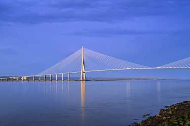 Pont de Normandie / Bridge of Normandy, cable-stayed road bridge over the river Seine linking Le Havre to Honfleur, Normandy, France. August 2020