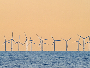 Wind turbines off the coast of Sheringham North Norfolk, England, UK, July.