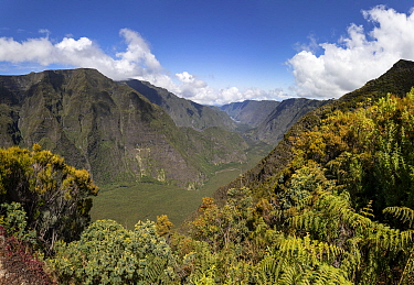 Le Plateau Nez du Boeuf, on the way to the Piton de la Fournaise, one of the most active volcanoes on the planet, Reunion Island.
