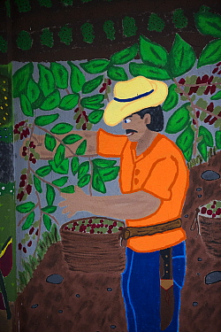 Mural of farmer picking Coffee (Coffea arabica) cherries. Organic coffee plantation near La Amistad International Park, Costa Rica. 2018.