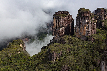 Tepuis, flat topped sandstone mountains, rising above rainforest. Canaima National Park, Venezuela. 2018.