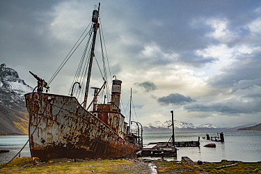 Abandoned whaling boat rusting at Grytviken, the largest former whaling station in South Georgia. October 2017.