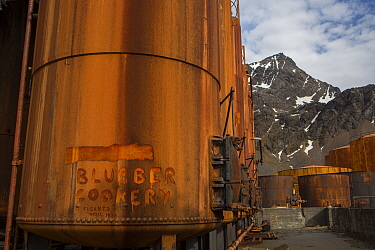 Rusty vats used to cook blubber at Grytviken, the largest former whaling station on South Georgia. November 2017.