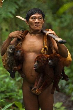 Huaorani Indian, Ontagamo Kaimo, hunting in Amazon rainforest, dead Colombian red howler monkeys (Alouatta seniculus) and South American coati (Nasua nasua) slung over shoulders. Animals shot using bl...