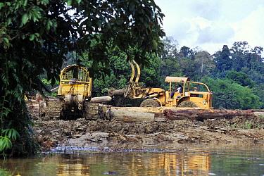 Deforestation of rainforest, logging machinery near river. Borneo.