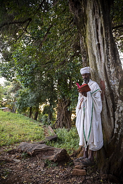 Priest praying in church forest of Gindatemen Michail Orthodox Church. Church forests remain largely intact within a degraded landscape as they are considered sacred. Near Bahir Dar, Ethiopia. 2018.