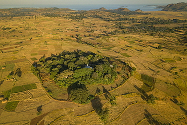 Aerial view of habitat fragmentation with degraded land surrounding church forest of Wagira Mariam Orthodox Church, in morning light. Forest cover in Ethiopia has fallen from 40% to 4.2% in 50 years....