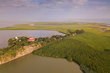 Aerial view of monastery surrounded by church forest on shore of Lake Tana, with river estuary beyond. Church forests remain largely intact in a degraded landscape as they are considered sacred. Near...