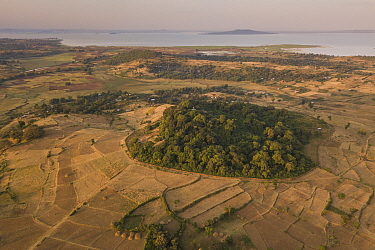Aerial view of habitat fragmentation with degraded land surrounding church forest of Gindatemen Michail Orthodox Church, Lake Tana in distance. Forest cover in Ethiopia has fallen from 40% to 4.2% in...