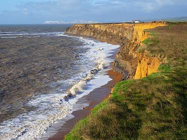 Coastal footpath and cliffs with Atherfield Point and The Needles beyond, Whale Chine, Isle of Wight, England, UK, January.