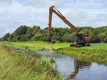 Machinery clearing vegetation out of South Drain, Shapwick Heath National Nature Reserve, Avalon Marshes, Somerset Levels and Moors, England, UK, August.