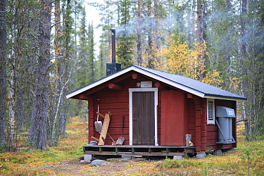 An old logging cabin, Mansonstugan, now a guesthouse on the trail through the national park. Old-growth pine forest, Muddus National Park, Laponia UNESCO World Heritage Site, Norrbotten, Lapland, Swed...