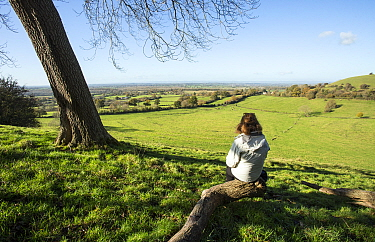 Woman looking out over the valley of the River Severn spread below her from the edge of the Cotswold Hills, Gloucestershire, UK, November 2020,