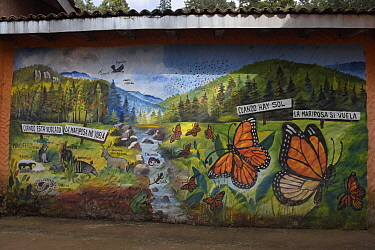 Mural of the mountain ecosystem of Monarch butterfly reserve at El Rosario Sanctuary Biodiversity, Mexico.
