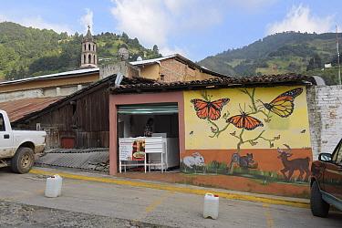 Mural of Monarch butterfly (Danaus plexippus), in Agangeo town, near Monarch butterfly reserve, Mexico