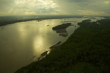 Napo River west of Yasuni National Park, Francisco de Orellana Province, Ecuador, July.